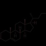 1024px-Cholesterol